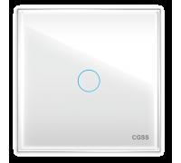 """Однолинейная панель стеклянная белая в рамку """"Практика"""" CGSS PL-PN01WCG"""