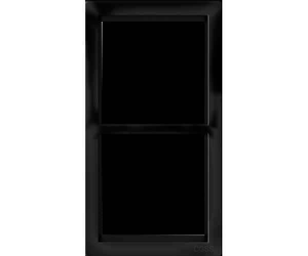 """Двухпостовая вертикальная рамка черная матовая CGSS """"Практика"""""""